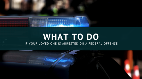 What to do if a Loved One is Arrested for a Federal Offense